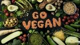 programas fit-veggie pack - foto