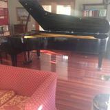 Piano gran cola de concierto - foto