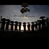 Mariachis económicos desde  100 - foto