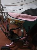 Triciclo con parasol - foto