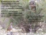 Coto de caza perdiz con reclamo por dÍas - foto