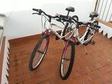 Bicicletas de montaña sénior - foto