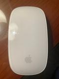 Raton / Mouse Apple - foto