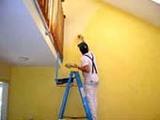!el pintor mÁs rÁpido y barato¡ - foto