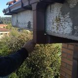 Fachadas y tejados, cubiertas - foto