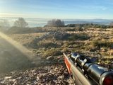 Rifle Semiautomatico - foto