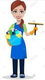 Limpiadora por horas - foto