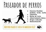 PASEADOR DE PERROS PROFESIONAL - foto