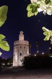 Traslados por Sevilla - foto