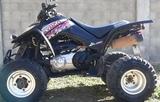 KIMCO - KXR 250 - foto