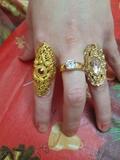 Goldfi chapado en oro - foto