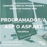 PROGRAMADOR/A ASP O ASP. NET - foto
