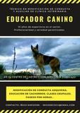EDUCADOR CANINO EN CASTRO URDIALES - foto