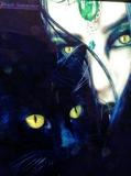 Ocultismo, brujeria , amarres - foto