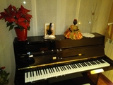 piano furstein night and day - foto