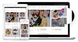 Desarrollador de tiendas online ALICANTE - foto
