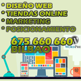 Creacion Web economico - BILBAO - foto