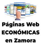 PÁGINA WEB BARATA Y PROFESIONAL - foto