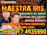 lectura del tarot en bogota3124935990 - foto
