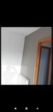Pintor profesional techos perfectos - foto