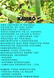 Kambó - foto