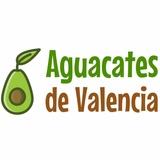 PLANTONES DE AGUACATES - foto