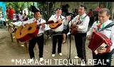 Mariachis  madrid - foto