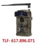 Rou vigilancia con camara campo - foto