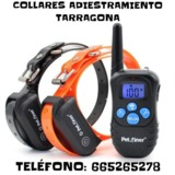 Z9b Collares de adiestramiento - foto