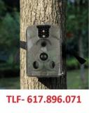 Uy4u vigilancia con camara campo - foto