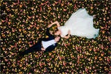 Bodas. Pack fotografia,video,dron - foto