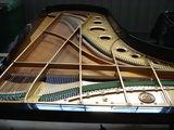 Bechstein E Piano Gran Cola - foto
