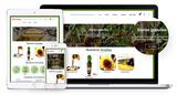 Desarrollo de tiendas online albacete - foto