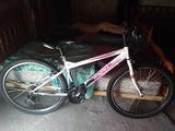 Bicicleta nueva - foto