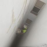 pintura de fachadas e impermeabilización - foto