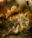 el tarot de alba - foto
