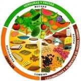 TEMARIO TEC. SUP. DIETÉTICA Y NUTRICIÓN - foto