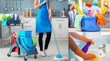 Se ofrece chica para limpieza - foto