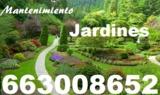 Mantenimiento jardines 663008652 - foto