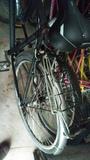 vendo bicicleta mujer y masculino - foto