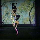 Clases danza y stretching - foto