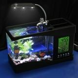 Usb mini acuario de sobremesa 30x16x10 - foto