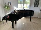 Piano de cola yamaha c3 renovado - foto