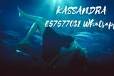 Kassandra sobrenatural pregunta gratis - foto