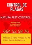 Prevencion de plagas - foto