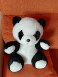 Oso panda de peluche - foto