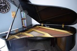 Piano de Cola Yamaha G3 - foto