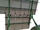 Placas solares y bombas de regadio - foto
