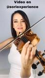Violín 4/4 Stradivarius Greffhule - foto