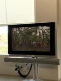 Vendo Television B&O Beovision 7-40 - foto